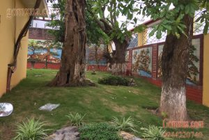 Mẫu tranh gốm sứ trang trí cho sân vườn